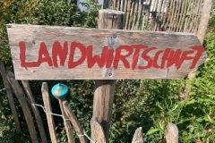 Bioland-Hof Schürdt 08.08.2020