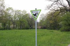 Grüngürtel erhalten - Frühlingsspaziergang durch die Wallanlagen der Oberstadt 16.04.2019