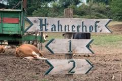 Klostergut Hahnerhof 13.08.2020